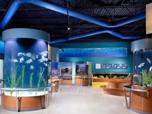 South Florida Science Center, West Palm Beach Attractions