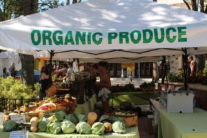 west palm beach green market organic produce