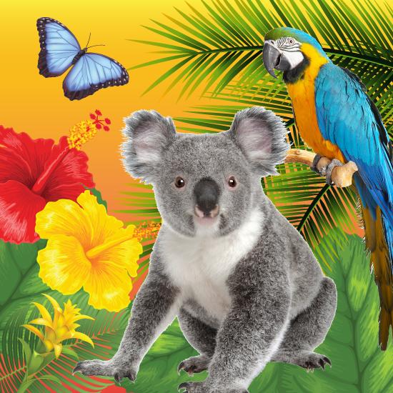 Palm Beach Zoo: Summer Zoo Camp, West Palm Beach, Florida
