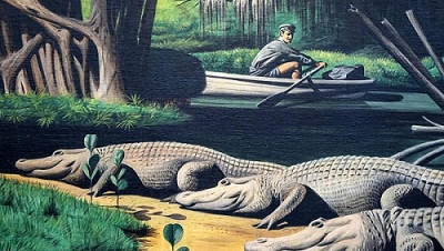 The Barefoot Mailman and Alligators