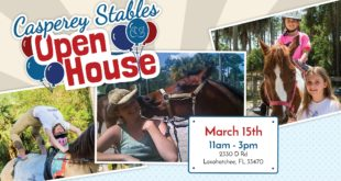 Open House at Casperey Stables, Loxahatchee, South Florida